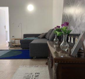 Appartamento indipendente vicino pineta
