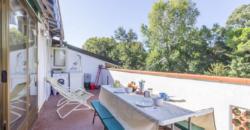 Attico con terrazza fronte pineta